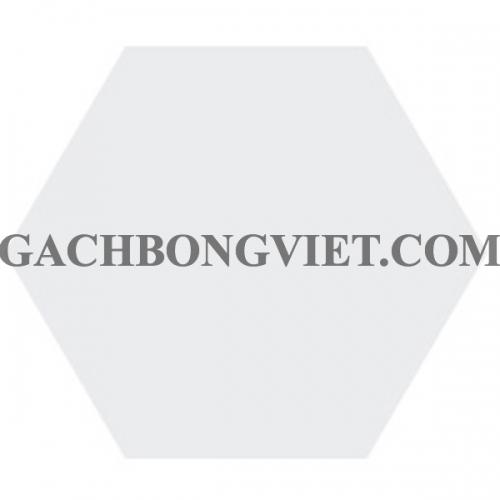 Gạch bông lục giác 23x20, VH-1000