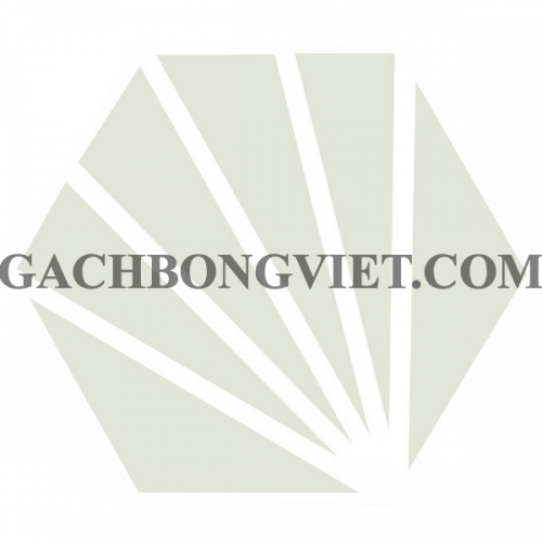 Gạch bông lục giác 23x20, VH-16