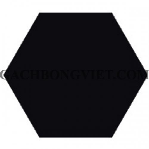 Gạch bông lục giác 23x20, VH-2000