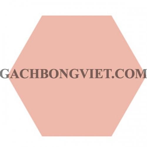 Gạch bông lục giác 23x20, VH-5005