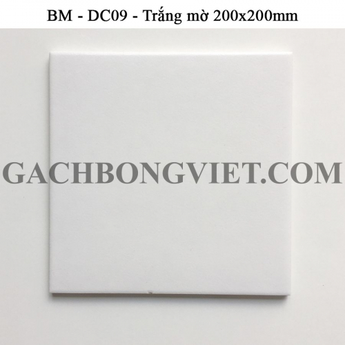 Gạch bông men 20x20, BM-A2001