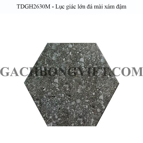 Gạch bông men lục giác lớn, LGM - TDGH2630M