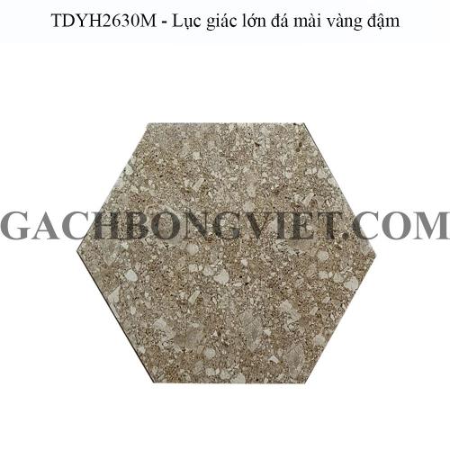 Gạch bông men lục giác lớn, LGM - TDYH2630M