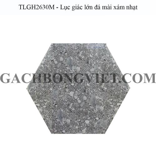 Gạch bông men lục giác lớn, LGM - TLGH2630M