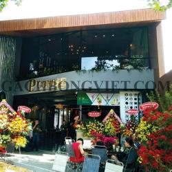 P coffee - Đồng Tháp